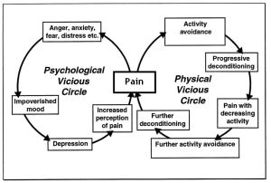 Pain Cycle